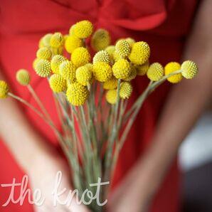 Yellow Craspedia Bouquet