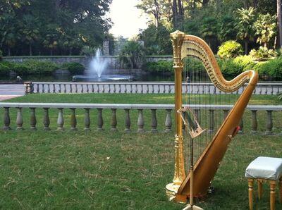 Coastal Virginia Harpist