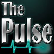 Detroit, MI Variety Band | The Pulse