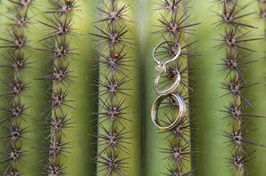 Engagement and Wedding Rings on Tucson, Arizona Cactus