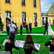 Carle Place, NY String Quartet | VSmusic4u Wedding & Event Musicians