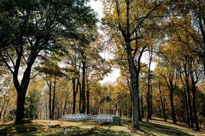 The Poplars at Bearwallow Mountain