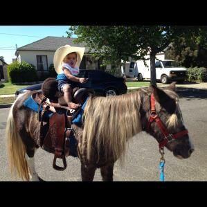 Rancho Cucamonga, CA Pony Rides   Betty Jean's Party Ponies