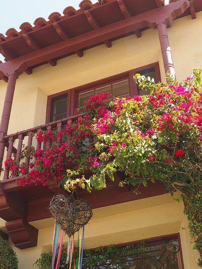 Quincy La Casa