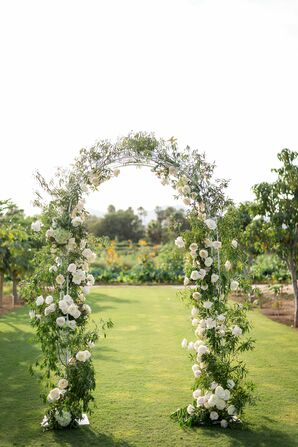 Blush Garden Rose Wedding Arch