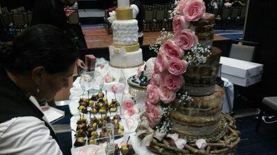 Cake Projection Performances