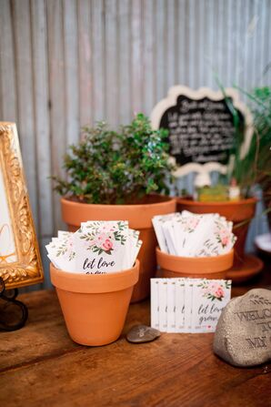 Potted Flower Seed Favors Display