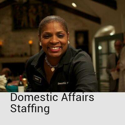 Domestic Affairs Bar/Waitstaff Svc. LLC.