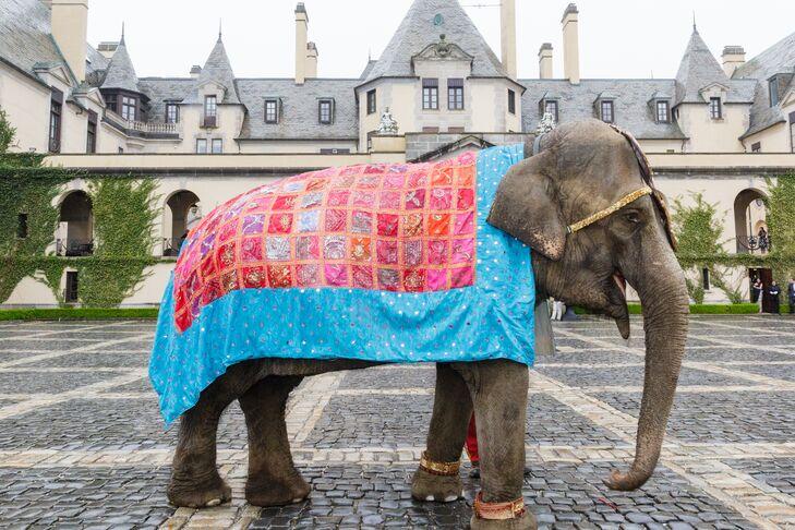 Elephant Baraat at Indian Wedding Reception