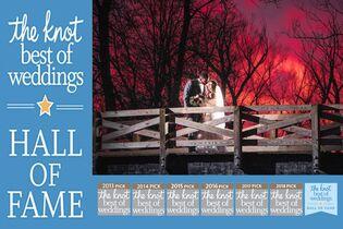 Vital Image - Wedding Planners