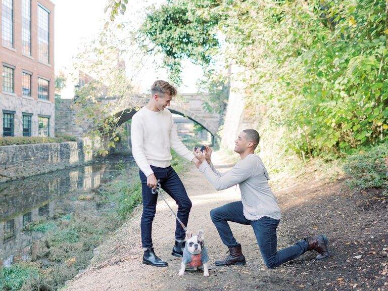 Couple getting engaged with dog