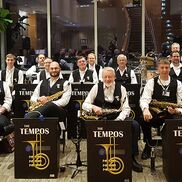Bellevue, WA Swing Band | The Tempos