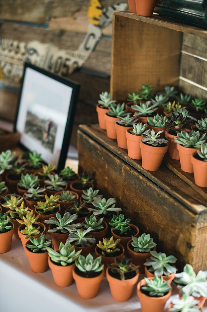 """For their favors, Lauren and David looked to their venue and theme for inspiration. """"I love succulents and plants,"""" says Lauren, """"and since our wedding had a very natural, organic feel, I thought succulents would make a great favor."""" The pint-sized potted plants were displayed alongside vintage crates, moss and stones during the reception, adding to the decor's earthy vibe."""