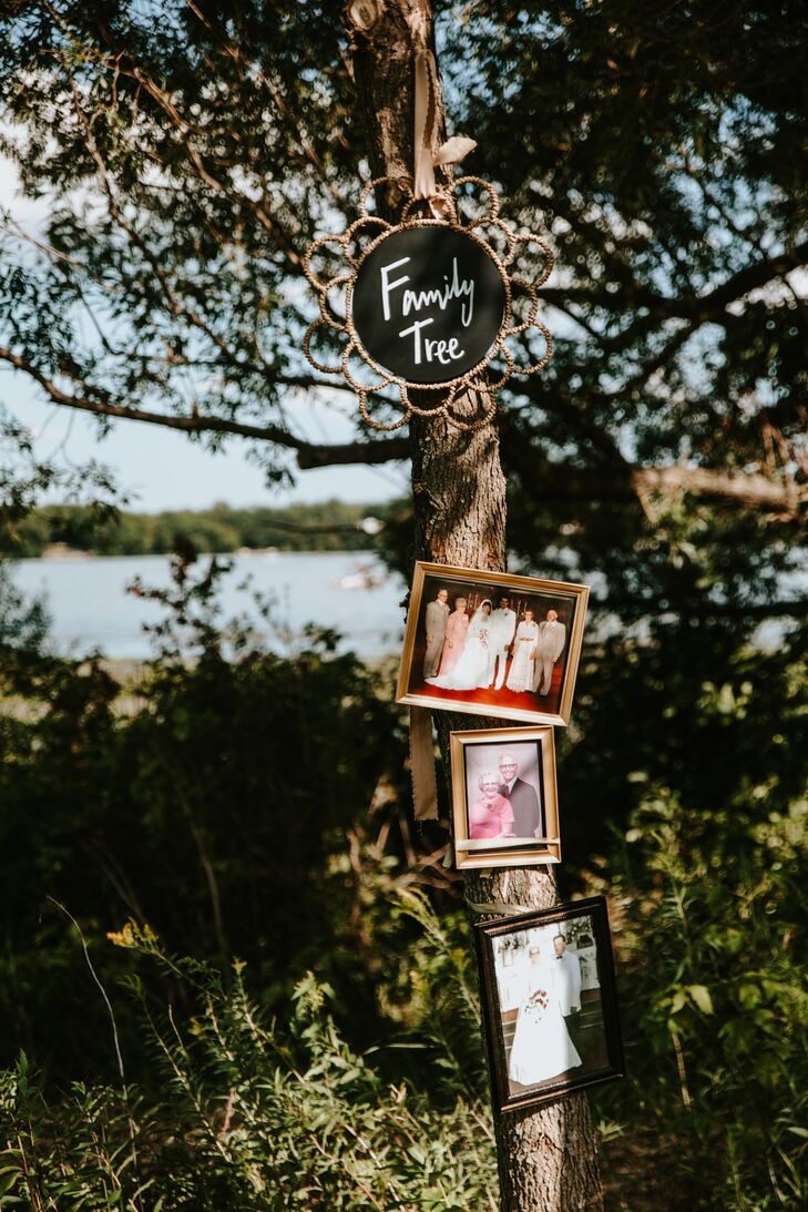 Family Tree Photo Display