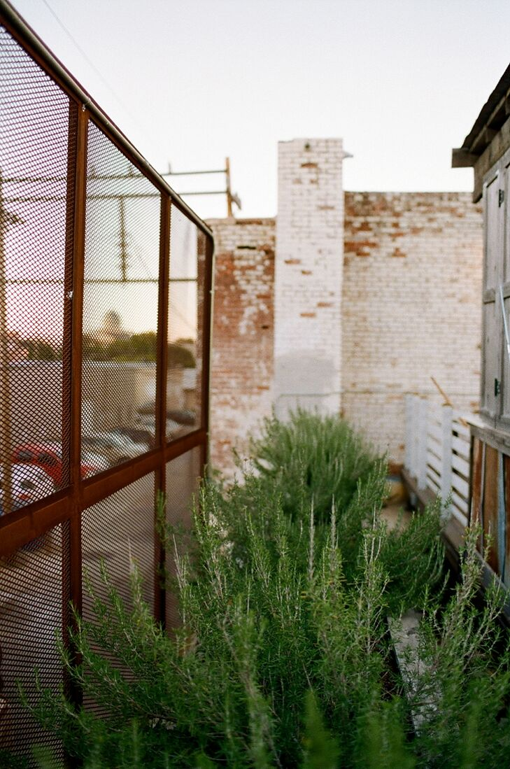 A garden on the east is part of the rooftop landscape at Plenty Mercantile in Oklahoma City, Oklahoma.