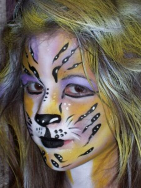 Absolutely Amazing Face Painting - Face Painter - South Elgin, IL