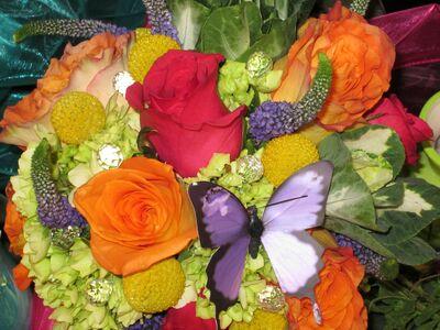Flowers Plus