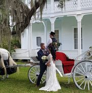 Brooksville, FL Animals For Parties | Avalon West Carriage Service