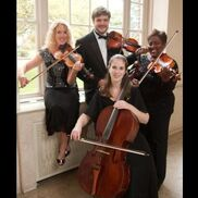 Canton, MI String Quartet | Go 4 Baroque String Quartet & Ensembles