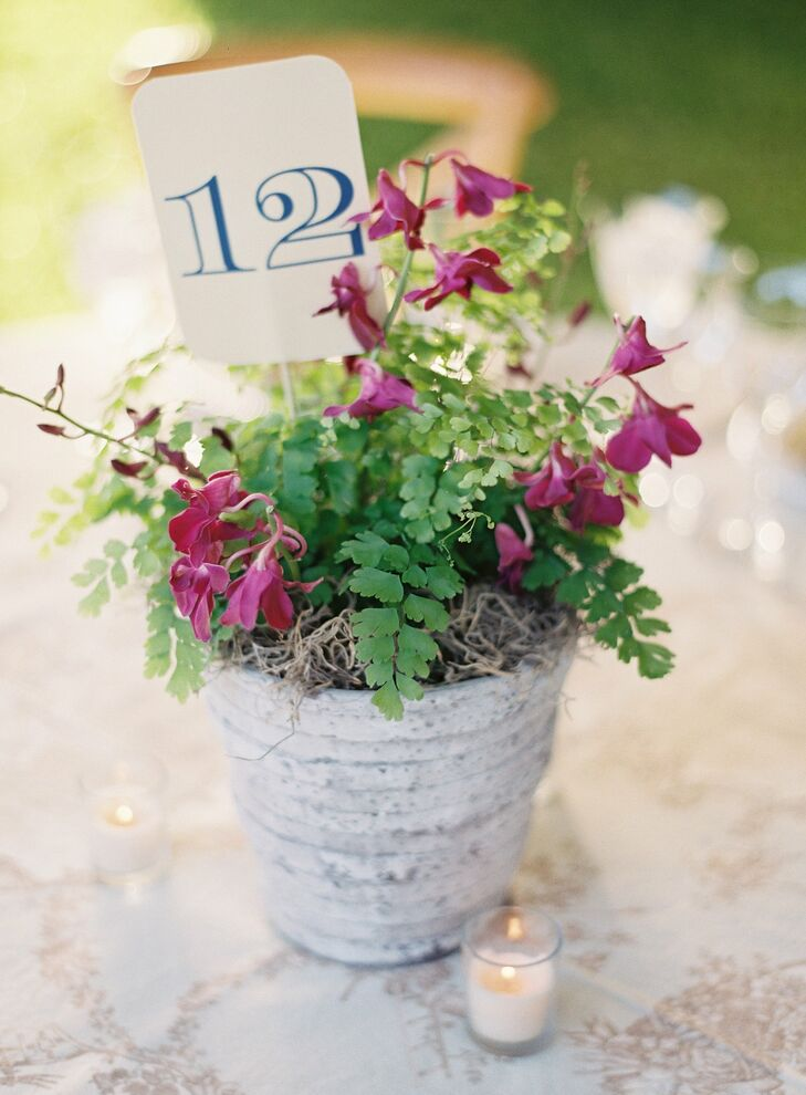 Distressed white pots and flower boxes were filled with mixed seasonal flowers and vegetables (think eggplants!).