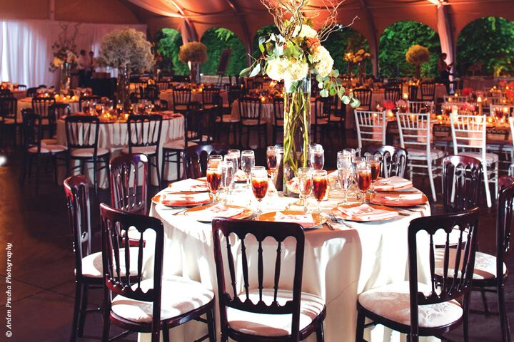 Wedding reception venues in fort worth tx the knot fort worth zoo junglespirit Gallery