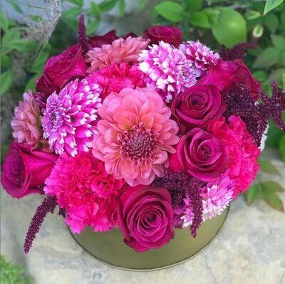 Blooms of Santa Barbara