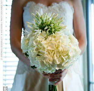 A modern take on the bridal bouquet, Tara had her florist bundle lush hydrangeas around spiky lilies of the Nile.