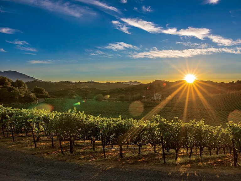 Napa, California vineyard honeymoon checklist