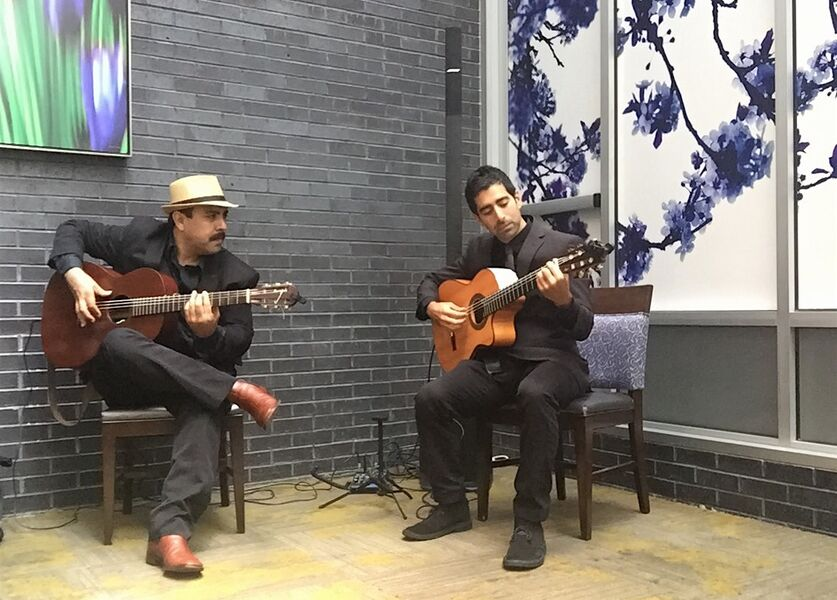 Salvo and Hugo: Spanish, Classical & World Guitar - Flamenco Guitarist - Brooklyn, NY
