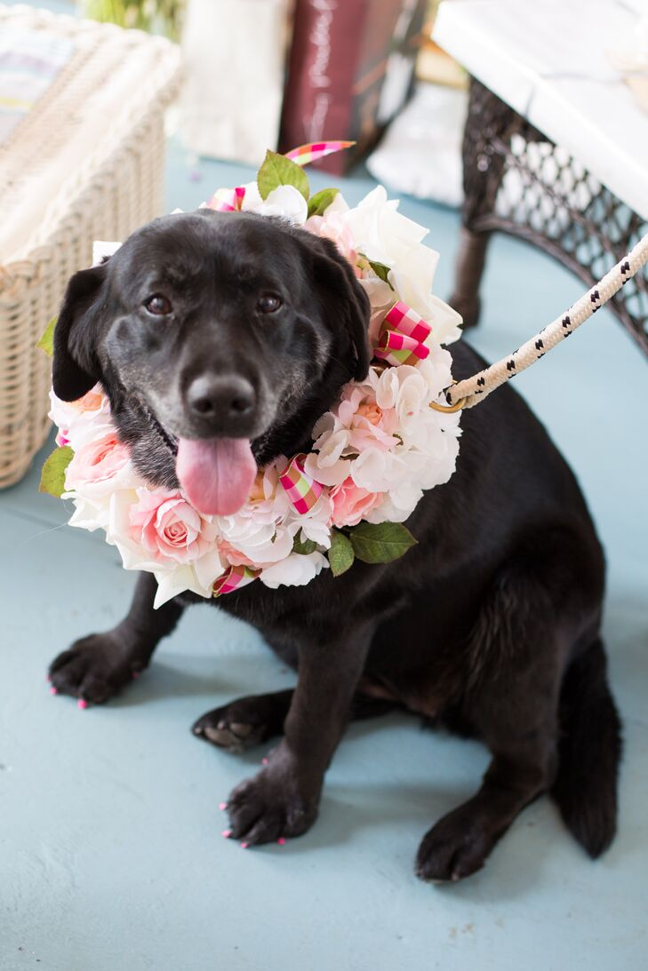 """The couple included the best man's black lab, Fiona, as an honorary """"best dog."""" She matched the bridal party with a light pink floral wreath and even pink toenails. """"She stole the show when she walked down the aisle!"""" says Khrysty."""