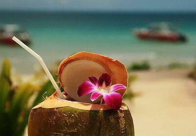 Tropical Sunset Vacations