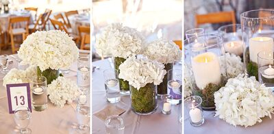 Skylight Weddings & Events