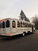 A 1 Limousine & Party Bus Chicago