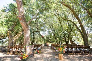 Outdoor Ceremony in Tree Grove