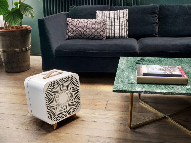 Blueair air purifier fan self-care gift for couples