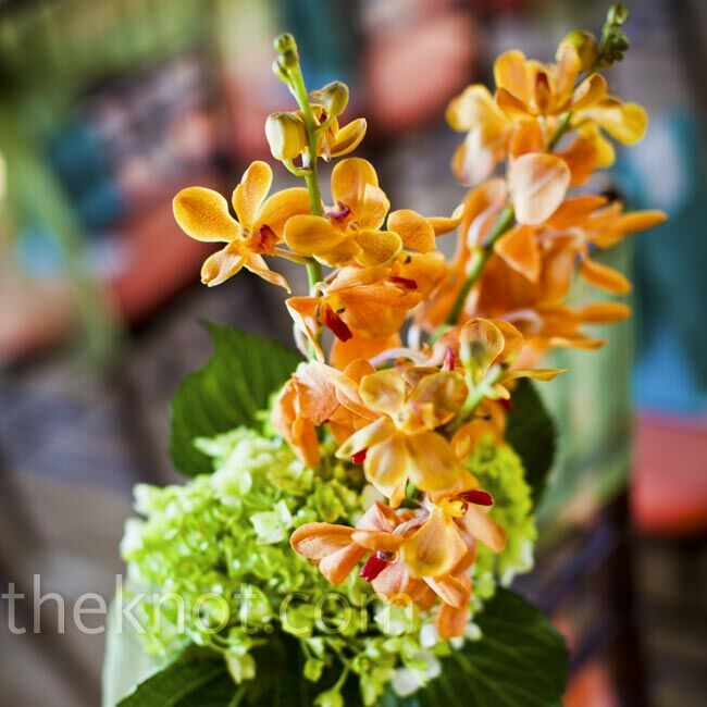 Small vases of orange orchids and green hydrangeas hung from the chairs that lined the aisle.