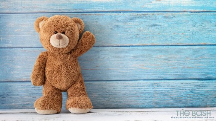 Teddy Bear Zoom Background