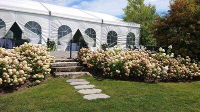 Bloom Field Gardens