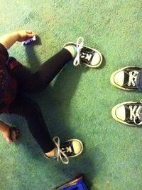 Kibbles09