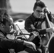 Richmond, VA String Quartet | Ninja Strings