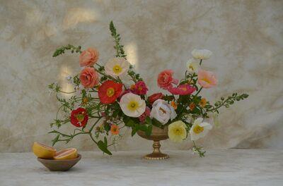 Wild Indigo Floral Design