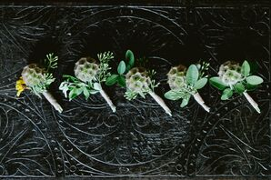Scabiosa Pods and Olive Leaf Boutonniere