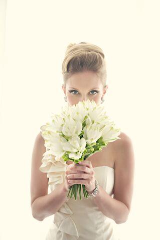 The white dress ct