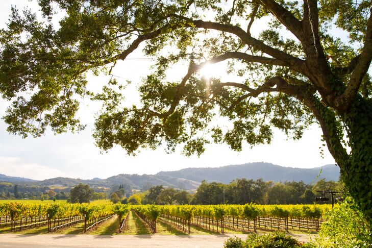 """""""We wanted an elegant, chic, classy wine country wedding,"""" Renato says. """"Chateau St. Jean was the first winery we visited, and we fell in love with it. Even though we visited a couple of other wineries, there was no other place we wanted our ceremony and reception to take place."""""""