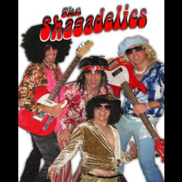 The Shagadelics - Disco Band - Chicago, IL