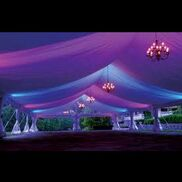 Houston, TX Party Tent Rentals | HOUSTON PARTY NETWORK