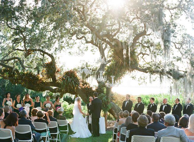 Wedding Planner Clearwater Fl Tbrb Info