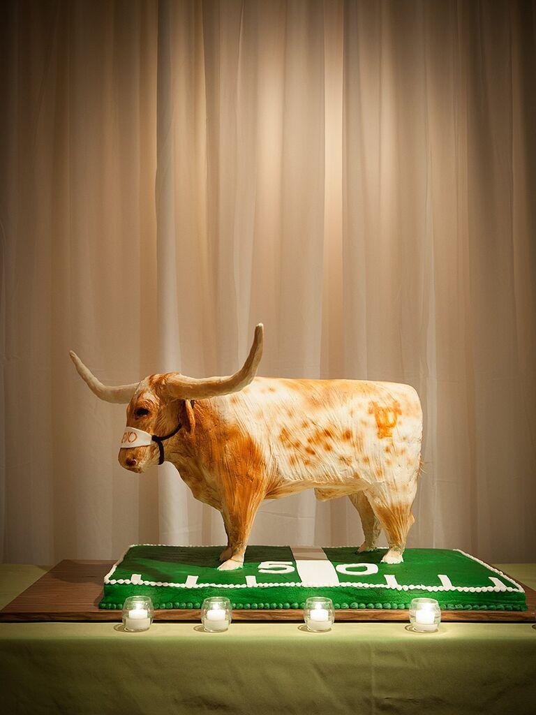 Texas Longhorns groom's cake idea
