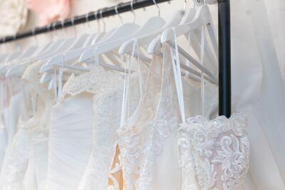 Star's Brides