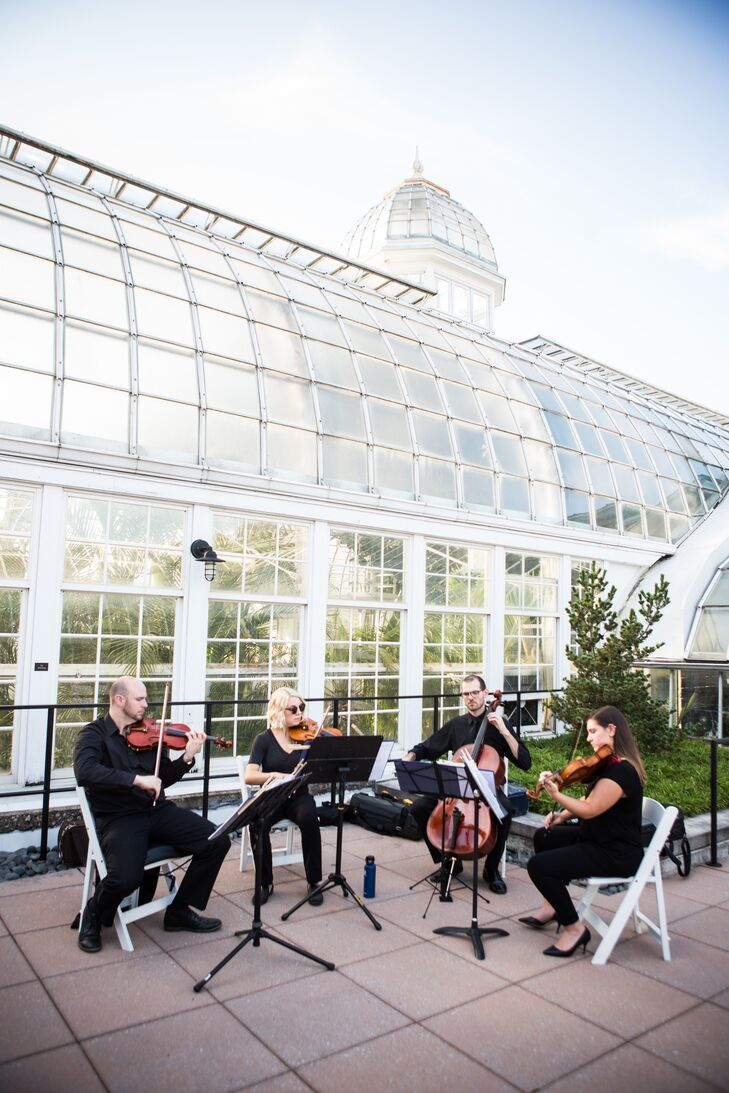 String Quartet Playing Music at Franklin Park Conservatory
